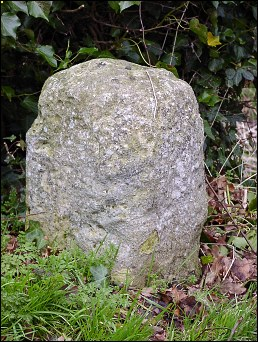 detail of Norwich milestone at TG221057