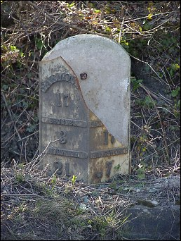 extra detail of Weston milestone at TM430860