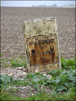 detail of Stapleford Down milestone at SU099381