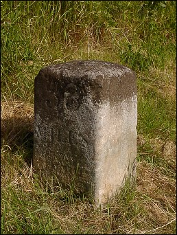detail of Graveley milestone at TL232277