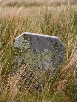 detail of Llyn Cottage milestone at SH790448
