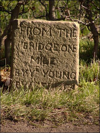 detail of Monymusk milestone at NJ699149