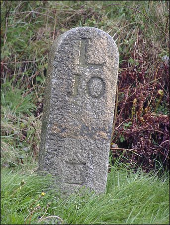 detail of Wilsey Down milestone at SX191874